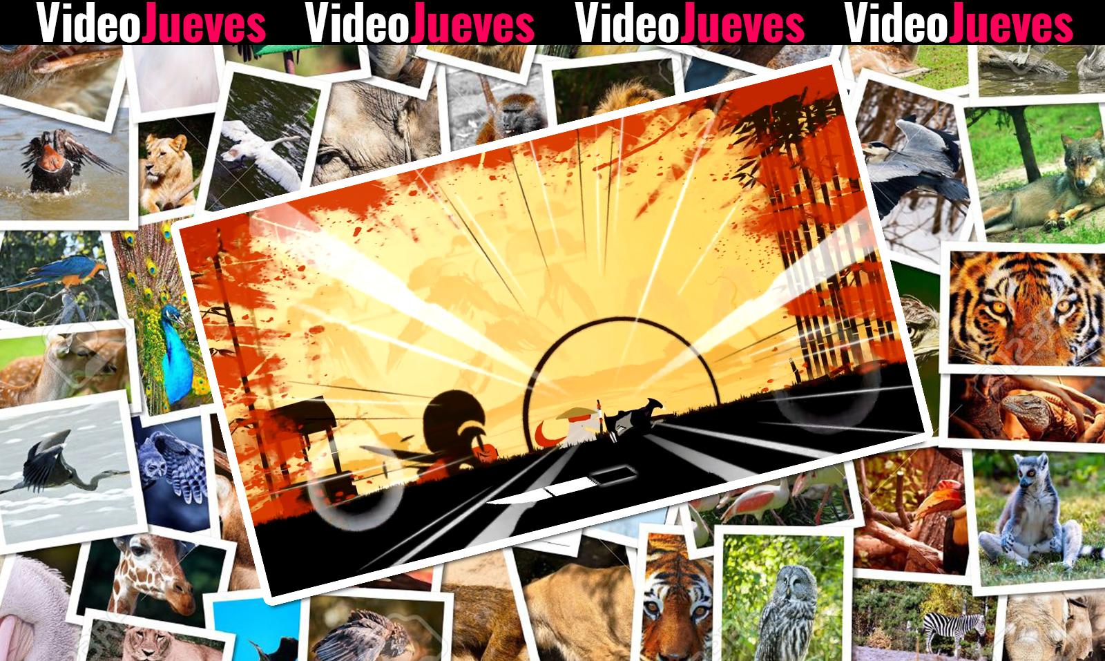 Samurai Bamboo Videojueves