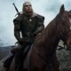 The Witcher Netflix Roach