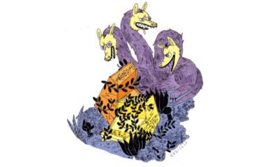 Cuentos fichineros ilustrados